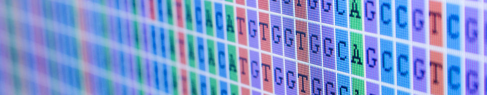 Understanding genome function in health and disease